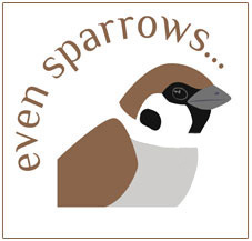 Even Sparrows...